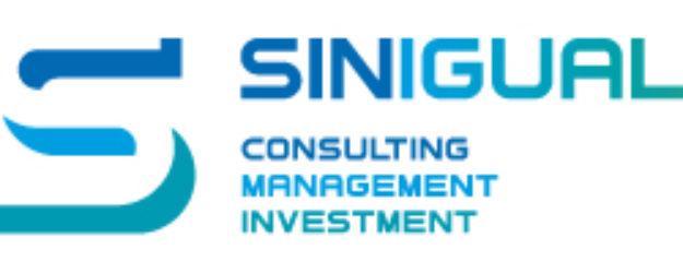 Sinigual Consulting GmbH